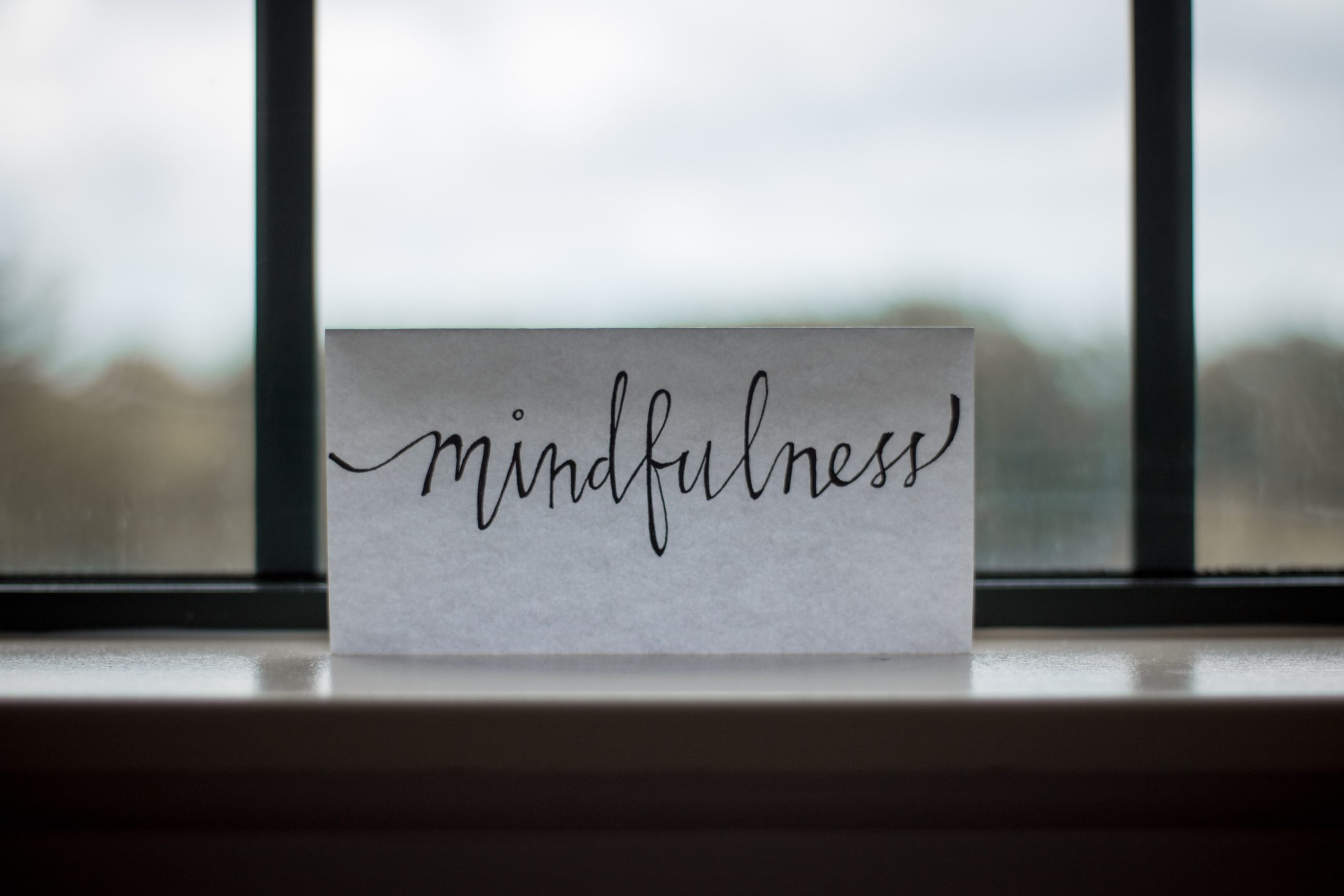 4 Important Things To Know About Mindfulness Meditation
